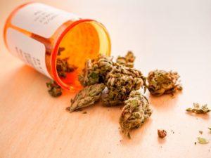 Medical Cannabis Industry's Secret Kickbacks