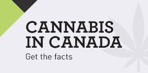 Licensed Producers Canada - Explore Canada's Cannabis Industry